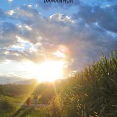 Mein Weg nach Damanhur                             – ein Erfahrungsbericht
