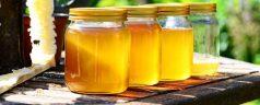 Der Honig von… Merinos