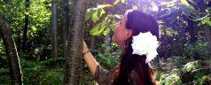 Warum ist der Heilige Wald ein Tempel?