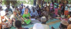 Hilf uns, den Senegal wieder aufzuforsten