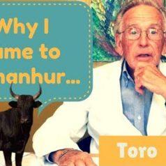 Wie ich nach Damanhur kam: TORO
